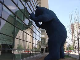 denver bear